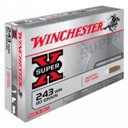 WINCHESTER 243 WIN POWER POINT 80GR